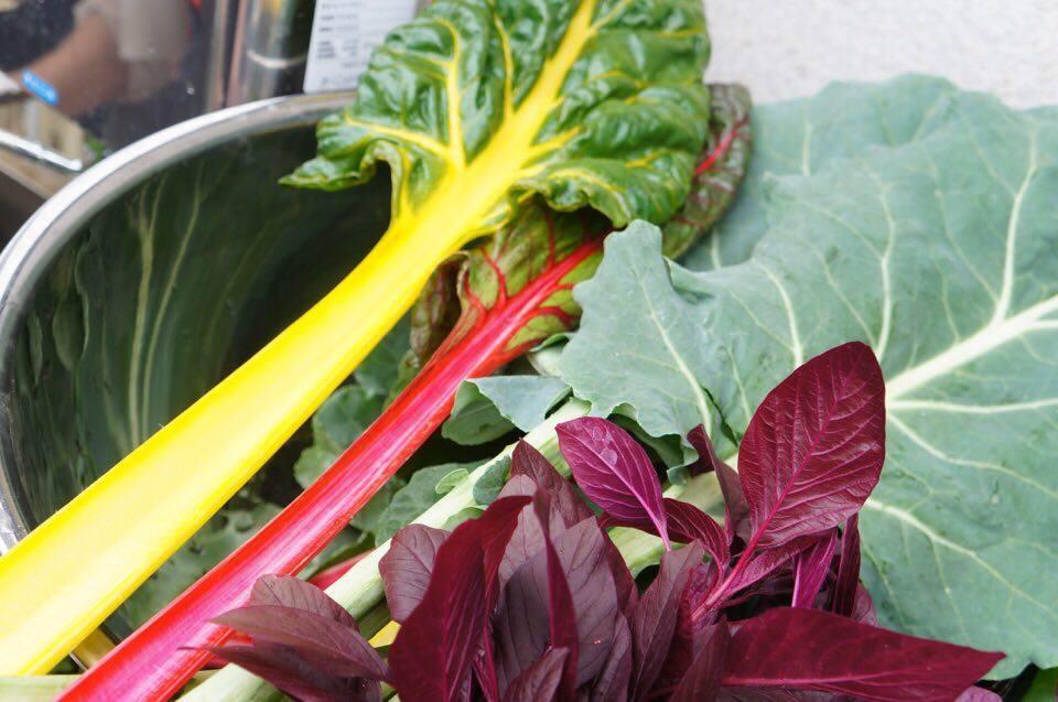 スムージーに使う野菜